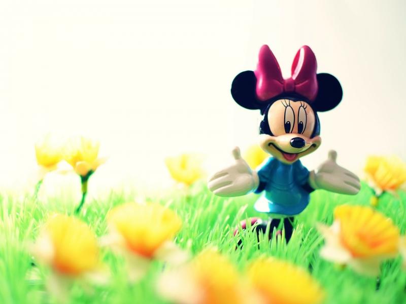 Disney ICP DUYURU 5 - Hazırlanması Gereken Belgeler
