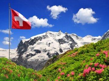 İsviçre Yabancı Dil Eğitimi ve Dil Kursları